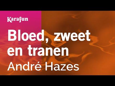 Karaoke Bloed, zweet en tranen - André Hazes *