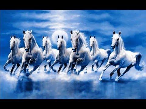 Horse Riding Wallpaper Hd क्यों और कहां लगाएं 7 दौड़ते घोड़ो की तस्वीर Effect Of 7