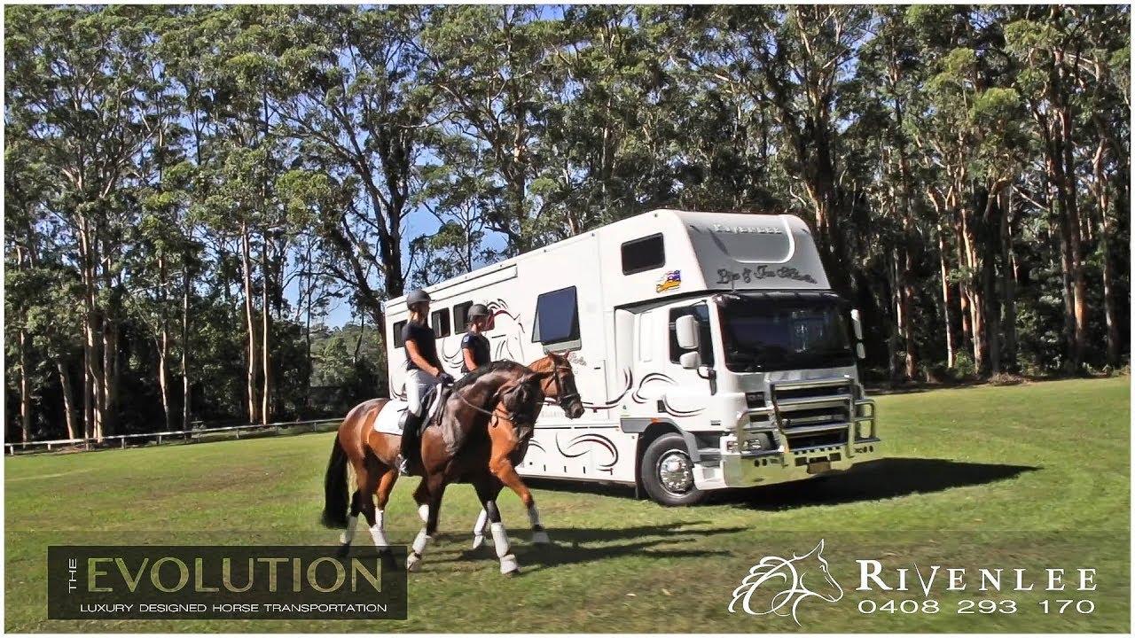 Sport Horse Films Australia - EQUINE PRODUCT VIDEO | Rivenlee Evolution Series