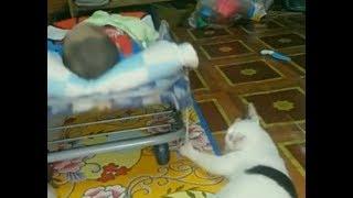 Кот укачивает маленького ребенка.