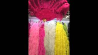 cheap ostrich feather ,peacock feather ,pheasant feather from China