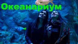 видео куда сходить на выходные в Москве
