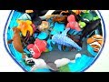 Learn Sea Animal Names Learn Colors For Kids Shark and Dolphin Toys