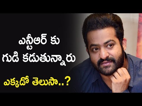 Jr NTR Fans Thinking to Build Temple for Jr NTR | Silver Screen