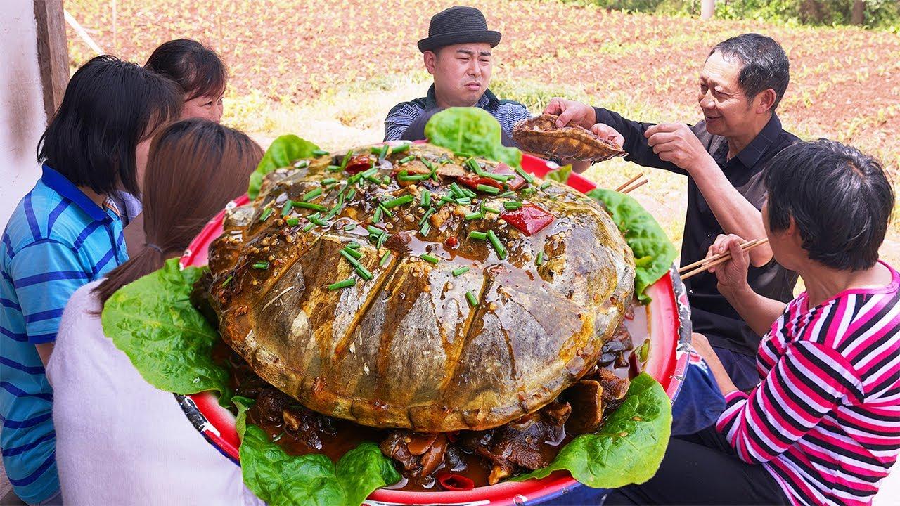 【超小厨】380元12斤鳄龟,配腊肉一锅炖,岳父直接上手啃,吃着比牛肉还滋润!