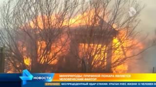 В Забайкалье горят почти 3 тысячи гектаров леса