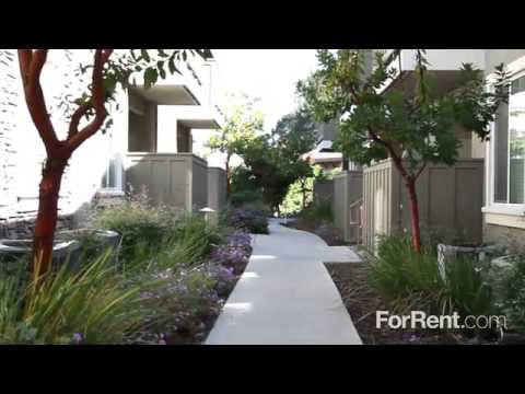 Apartments For Rent In Danville Ca