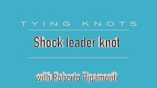 Лідер шок вузол
