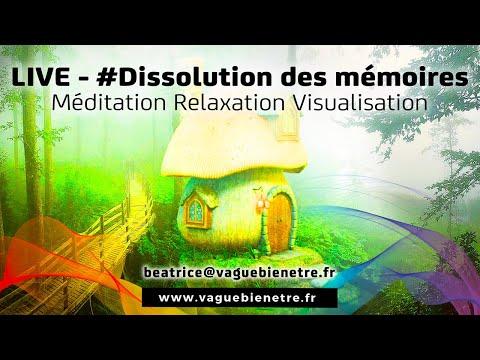 LIVE#10  Dissolution Des Mémoires