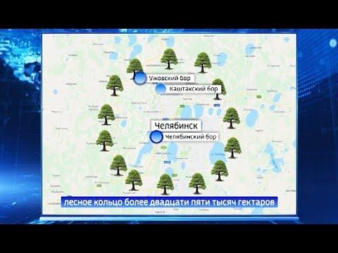 """Схема """"зеленого щита"""" Челябинска"""
