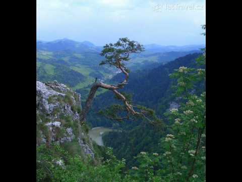 Na Kráľovej Holi (Fleret)