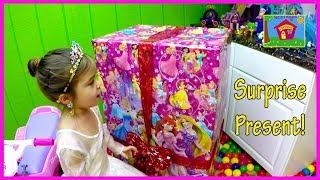 Disney Princess Toys Surprise Christmas Present!