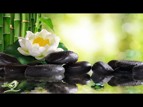 Relaxing Piano Music: Soft Sleep Music, Water Sounds, Meditation Music, Relaxing Music ★102