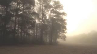 Ludovico Einaudi - Seven Days Walking / Day One - Low Mist
