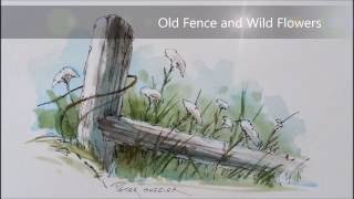 Pen and Wash watercolor tutorial of a Fence post and Wildflowers. With Peter Sheeler