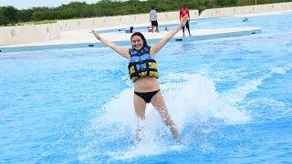 Dolphin Royal | Punta Cana Tours