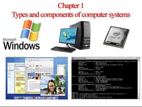 cbse notes for class 5 computer in action computer software and