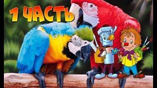 КАРАНДАШ И САМОДЕЛКИН В АВСТРАЛИИ 1 часть Веселые сказки Детские аудиокниги Сказки