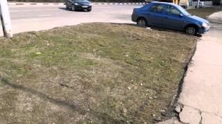 Поменяли газоны на рулоны(22.04.2013г. Прошлой глубокой осенью на Соловьином проезде заменили газоны на рулонную траву. Деньги затратили..., 2013-04-22T15:17:08.000Z)