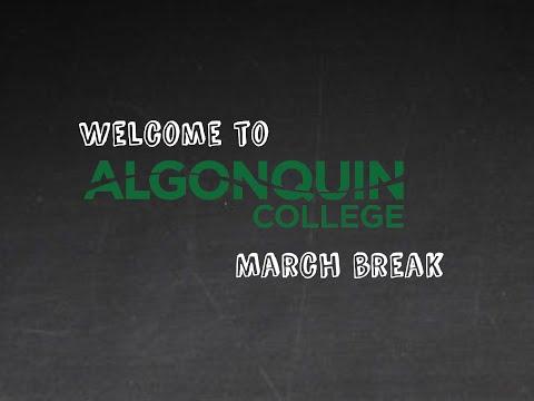 Virtual March Break - Webinar
