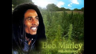 bob marly jaming