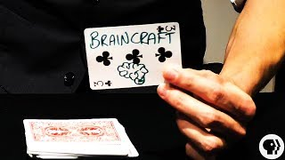 One of BrainCraft's most recent videos: