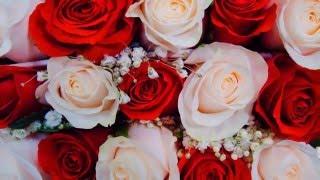 Ф. Мендельсон - Свадебный марш