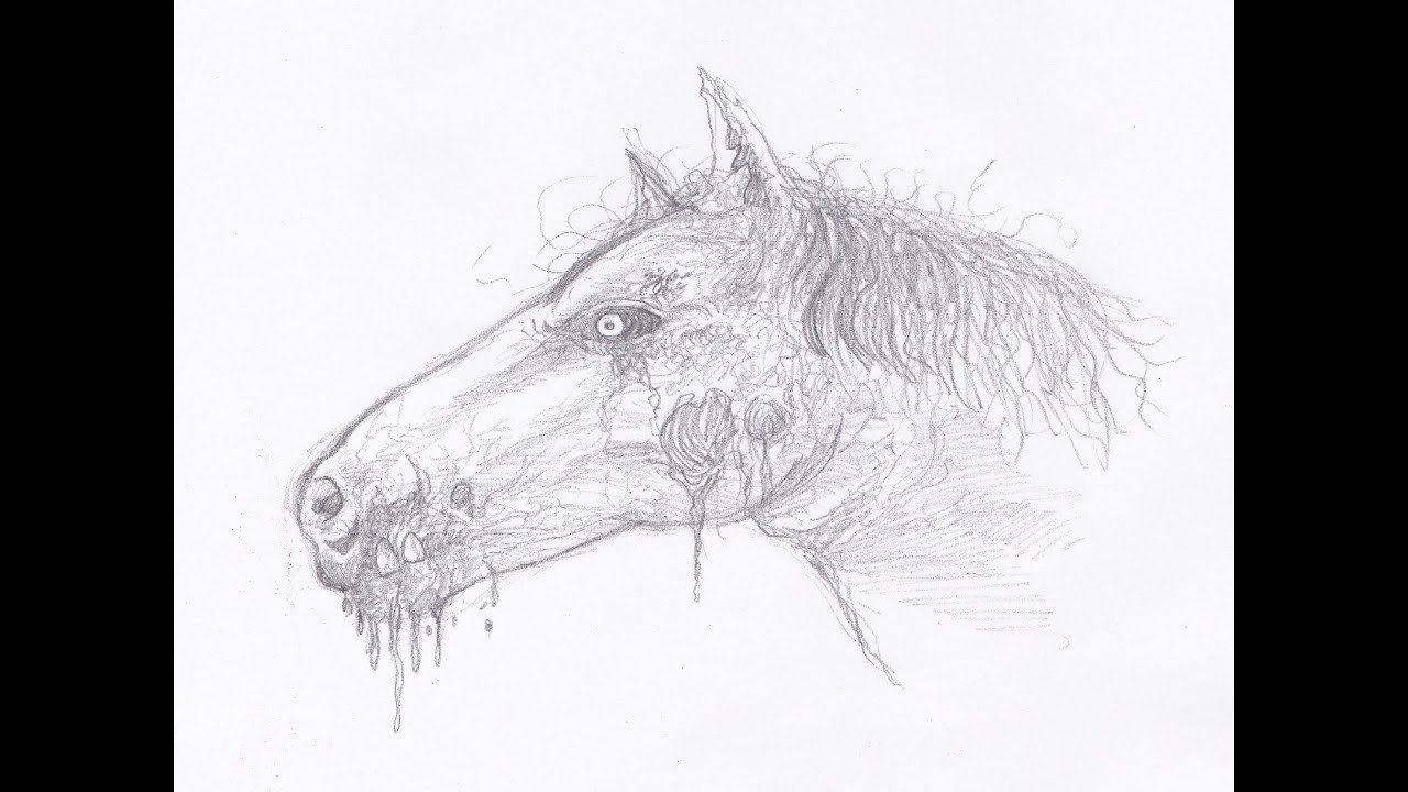 Black horse head drawing - photo#16