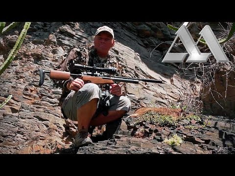 Airgun Hunting Dassies in South Africa with the Air Arms S410 TDR