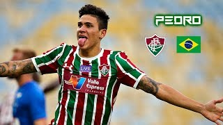 Pedro 2018-2019 - Insane Skills Goals & Assist - Fluminense
