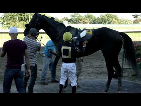 video thumbnail for MONMOUTH PARK 9-29-19 RACE 08
