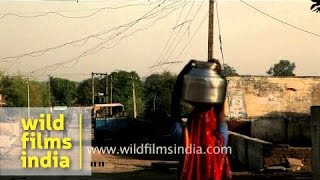 Woman carrying water vessel effortlessly