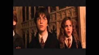 "Harry Potter Parodia (0 IVONY) - ,,Komnata Meteora"""