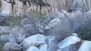 ortega falls day hike near lake elsinore ca