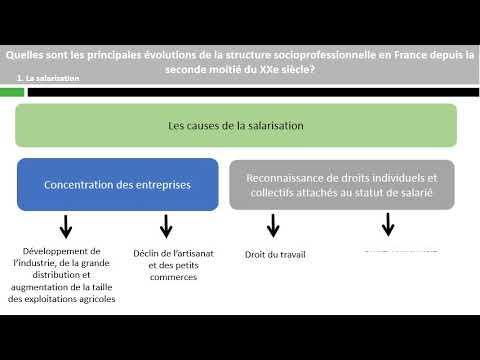 Quelles sont les principales évolutions de la structure socioprofessionnelle ?
