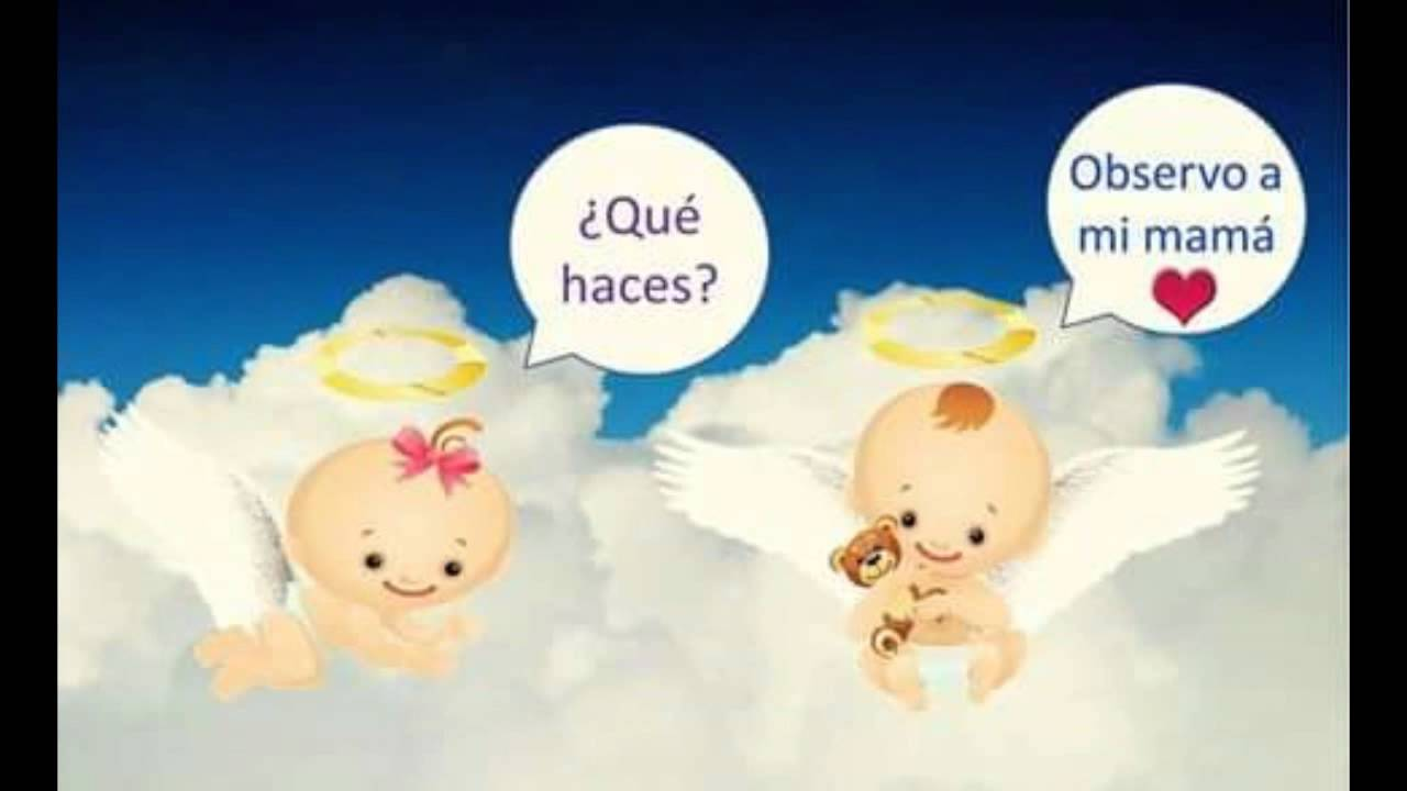 Angelitos Bebes