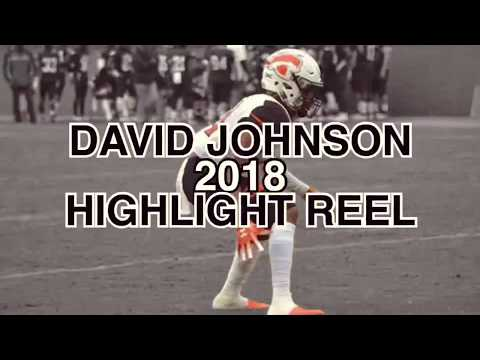 David Johnson Junior Year Highlight Reel - Tusculum University #24