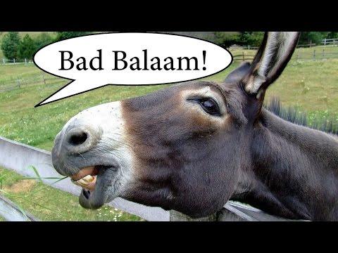 Error of Balaam Explained