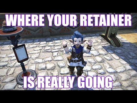 Where Your Retainer is REALLY Going [Funny FFXIV Machinima]