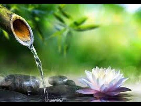 Relajante Sonido Del Agua - Fuente De Agua Zen Para Dormir - Meditar - Relajarse