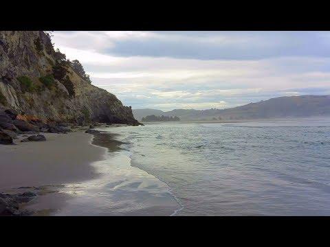 Nature's Gift | Dunedin's Doctors Point