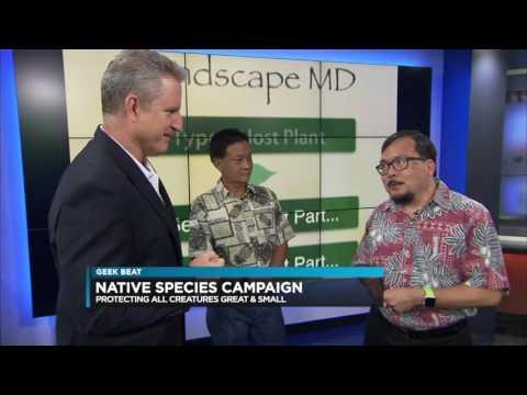 Geek Beat - World Conservation Congress, Landscape MD, Kamehameha Butterfly