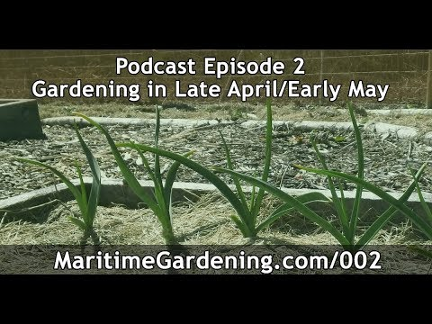 MGP Episode 2: Gardening in Late April / Early May