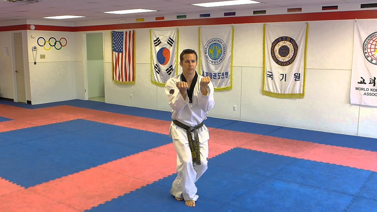 taekwondo first degree black belt essay I can honestly say, that i have learned a lot from my experience in taekwondo and martial arts, in general, but getting my black belt, is just the beginning of my training report abuse print.