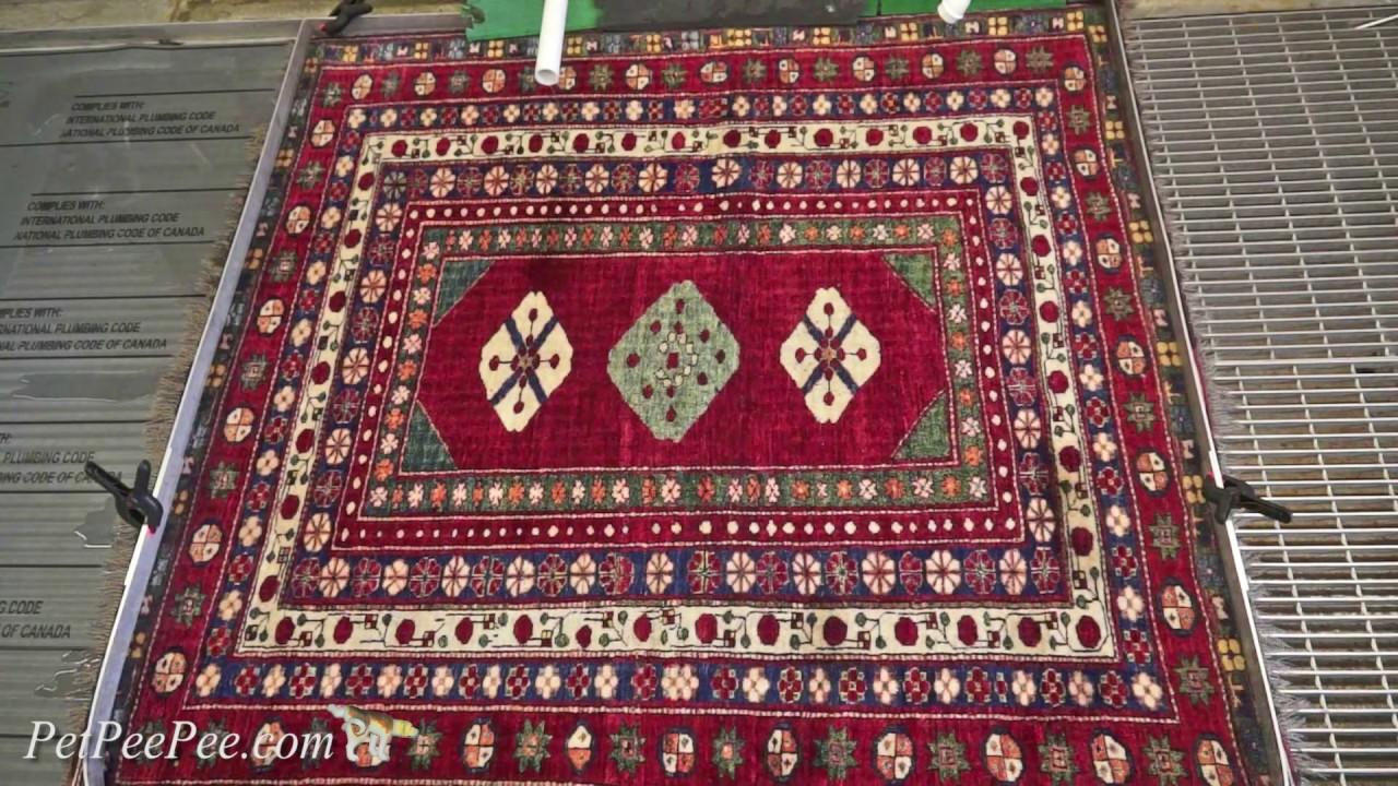 Oriental Rug Cleaning Portland Me Carpet Vidalondon