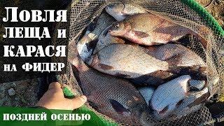 Ловля леща и карася на фидер осенью. Супер рыбалка! : Рыболовный дневник