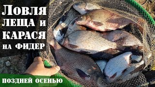 Рыбалка сетями, Осенняя Щука, карась, лодка ПВХ FLINC 360 LA