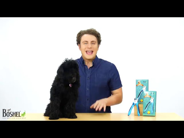 Product Video - BOSHEL Dog Nail Clippers⠀