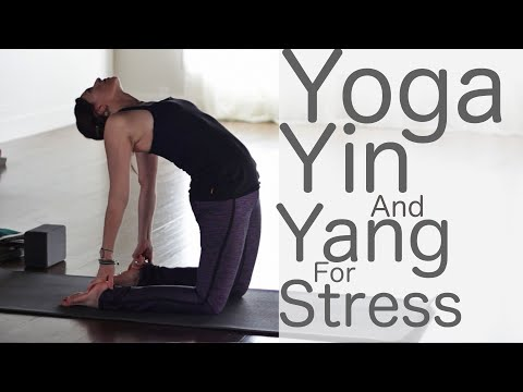 40 Minute Yoga For Stress Relief: Yin and Yang  | Fightmaster Yoga Videos