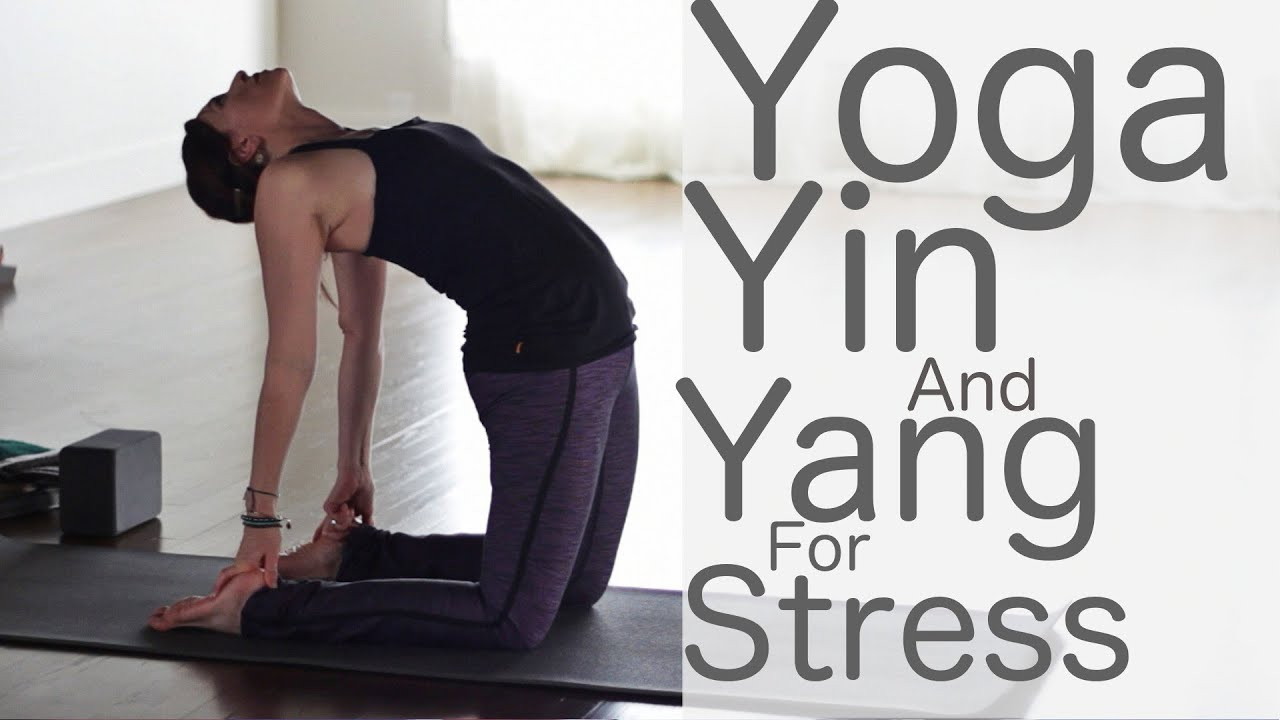 Yoga For Stress Relief: Yin and Yang | Fightmaster Yoga ...